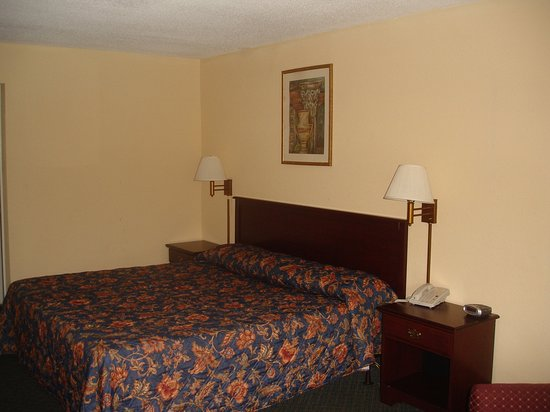 Lancaster, Carolina del Sur: Guest Room with One Bed