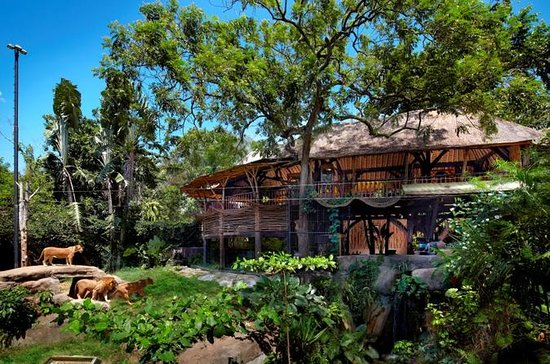 Zoo Admission with Revitalization Treatment Spa