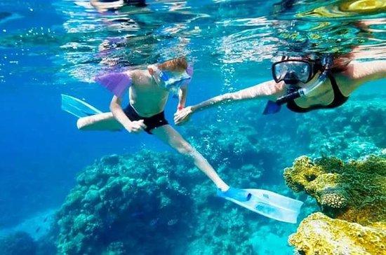 St Maarten Shore Udflugt: Speed...