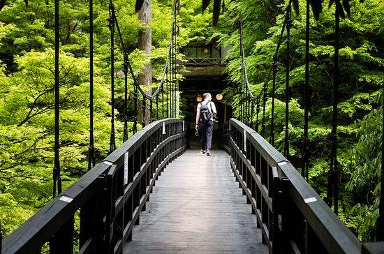 Kyoto Mount Takao Vandringstur