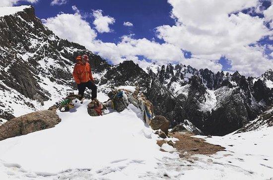 Trekking Nyenbo Yurtse til Alpine...
