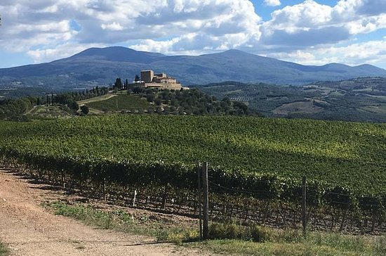 Brunello Bike Tour