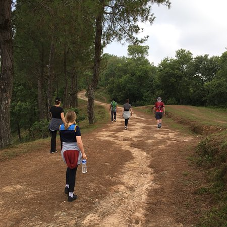 Nagarkot Panoramic Hiking Trail: photo1.jpg