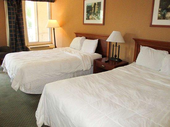 Motel 6 Gainesville: double