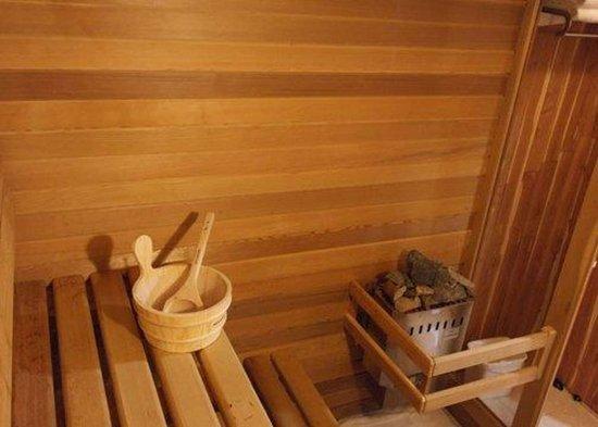 Boischatel, Канада: Hotel sauna