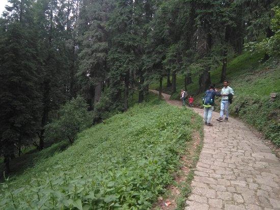 Pangna-Karsog Valley Foto