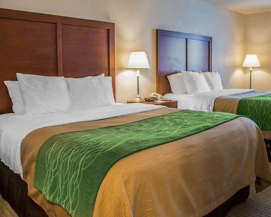Comfort Inn & Suites: Guest room with queen beds