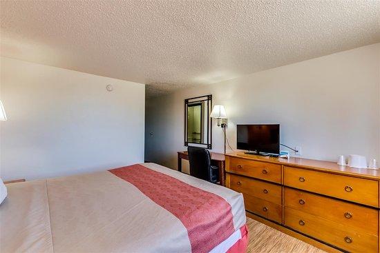 Motel 6 Albert Lea: single