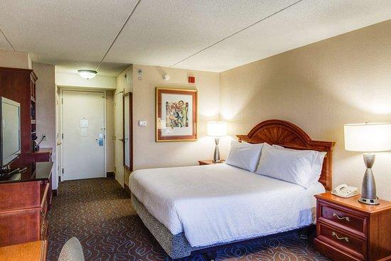 Hilton garden inn detroit metro airport 112 1 1 9 updated 2018 prices hotel reviews for Hilton garden inn detroit metro airport