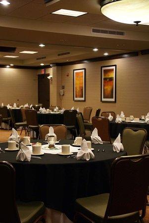 Hilton Garden Inn Granbury: Meeting Room