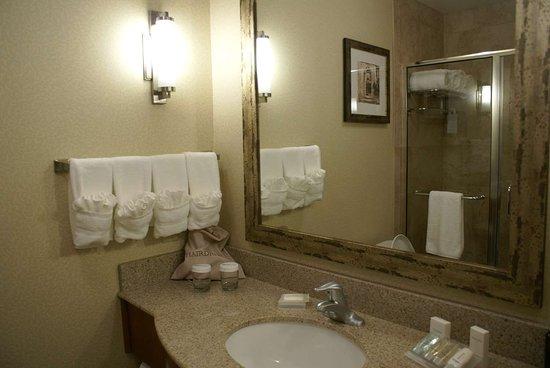 Hilton Garden Inn Denton: Guest room