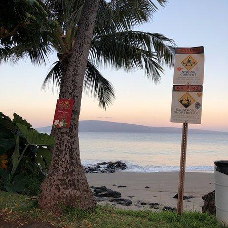 Maui Garden Oasis : photo1.jpg