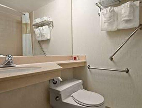 Ramada by Wyndham Grand Junction: ADA Bathroom