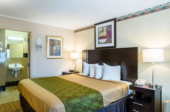 Pittsfield, MA: Guest room