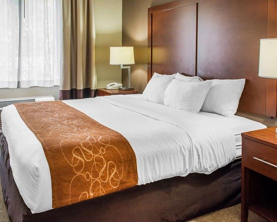 Comfort Suites: Suite with king bed