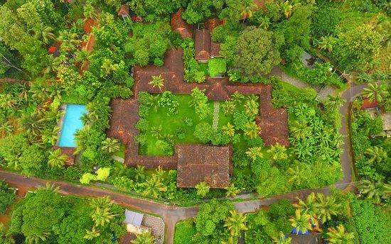Muvattupuzha, Ινδία: View from above