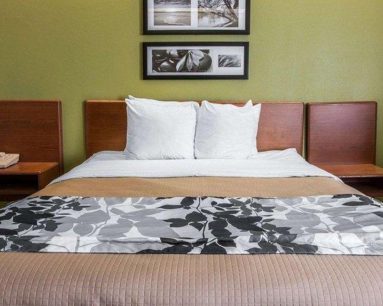 มิลาน, มิชิแกน: Guest room with queen bed