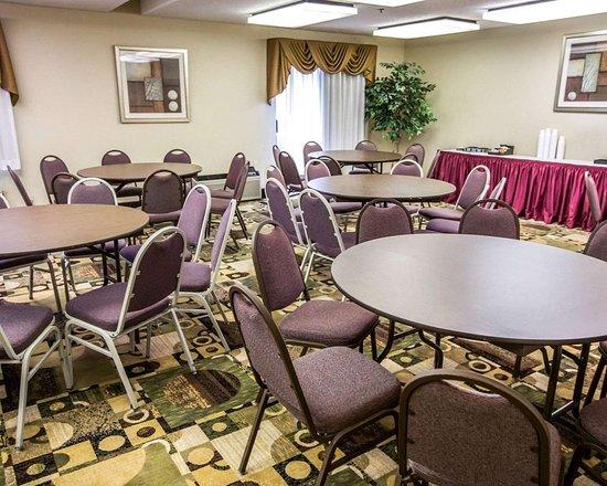 Comfort Suites Oakbrook Terrace: Conference facilities