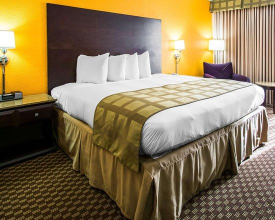 Quality Inn & Suites-Capital District: Guest room with king bed