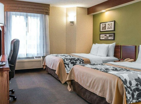 Flat Rock, Μίσιγκαν: Guest room