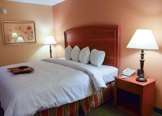Florissant, MO: Guest room with queen bed