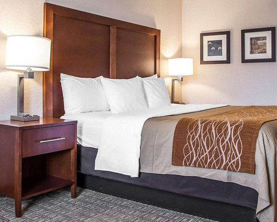 Comfort Inn St Louis - Westport: Guest room with one bed