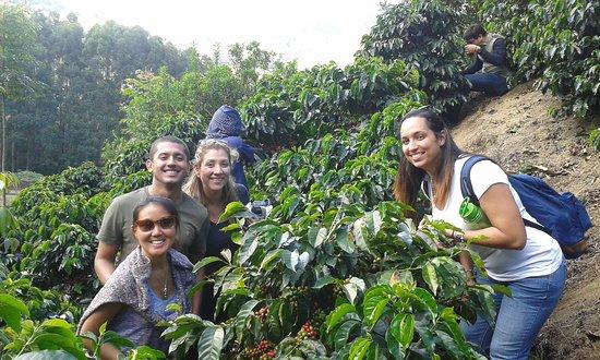 Santa Maria, Costa Rica: Visit Fina El Cedral