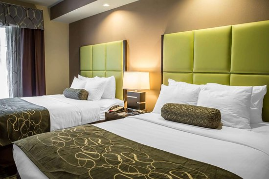 Comfort Suites New Bern : Guest room with two beds