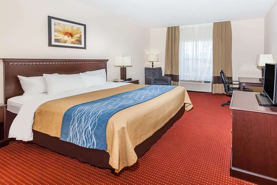 Baymont by Wyndham Decatur: 1 King Bed Room