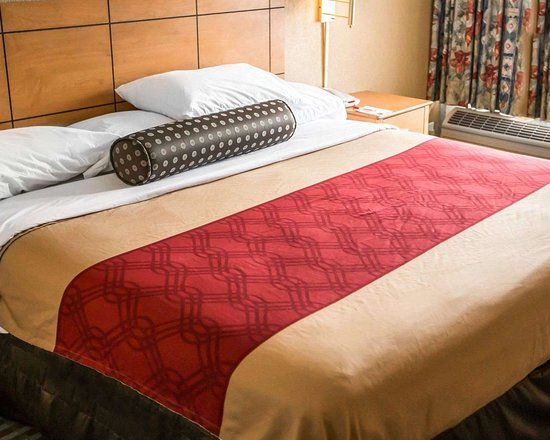 Shorewood, IL : Guest room with king bed