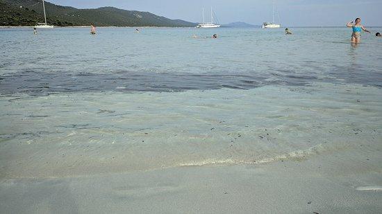 Dugi Island, Croatia: Limpida ma non troppo