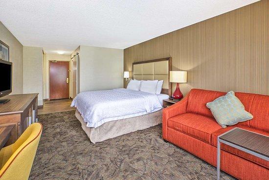 Hampton Inn Detroit/Belleville-Airport Area: Guest room