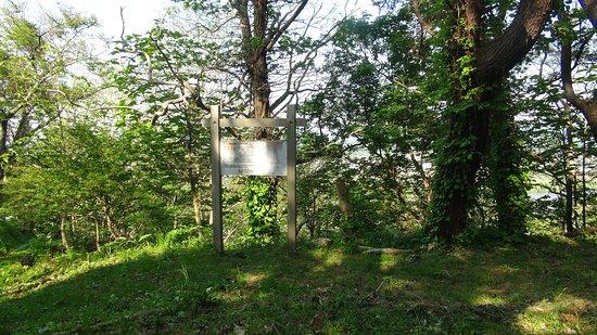The Site of Hanazawadate