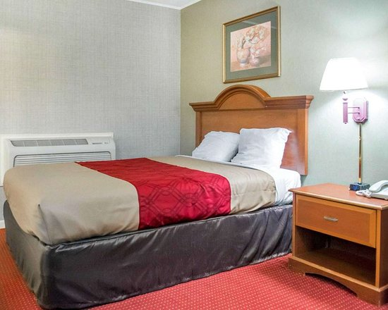 Newton Falls, OH: Guest room with queen bed
