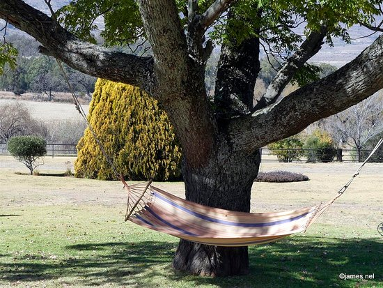 Ficksburg, South Africa: Relaxation