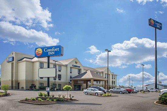 Comfort Inn: Hotel near popular attractions