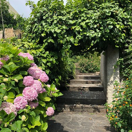 Pietranera, France : photo0.jpg