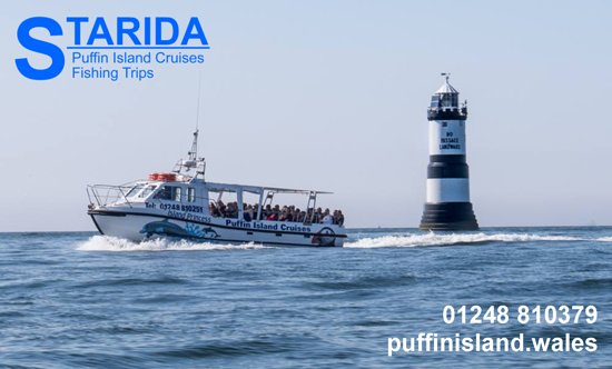 ‪Starida Puffin Island Cruises & Sea Fishing Trips‬