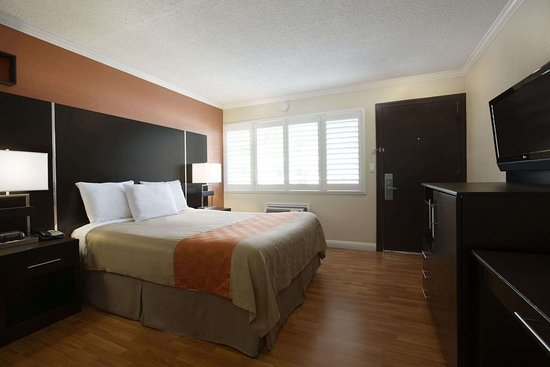 Howard Johnson by Wyndham San Mateo: One Queen Bed Room