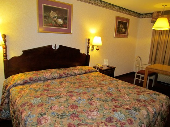 Eagle Inn 45  Cc B65 Cc B60 Cc B6 Prices Hotel Reviews Sumter Sc Tripadvisor