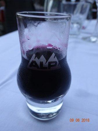Alp Penzion Resmi