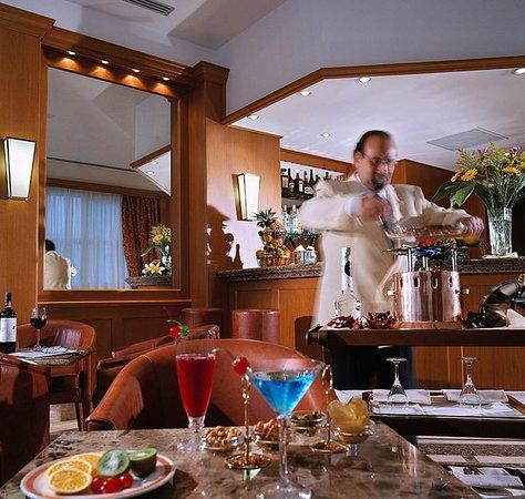 Hotel San Gallo Palace: Bar and Lounge