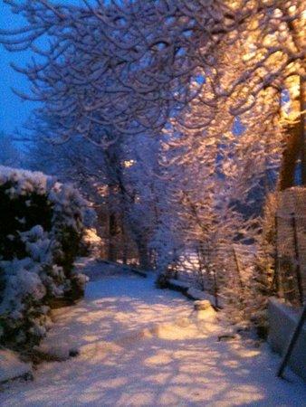 """""""coté jardin"""" sous la neige"""