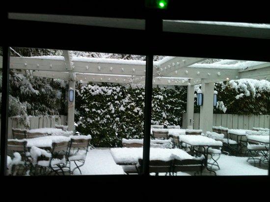 """""""coté jardin sous la neige"""