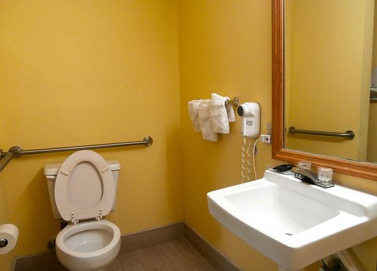 Hawkinsville, GA: Accessible Guest Bathroom