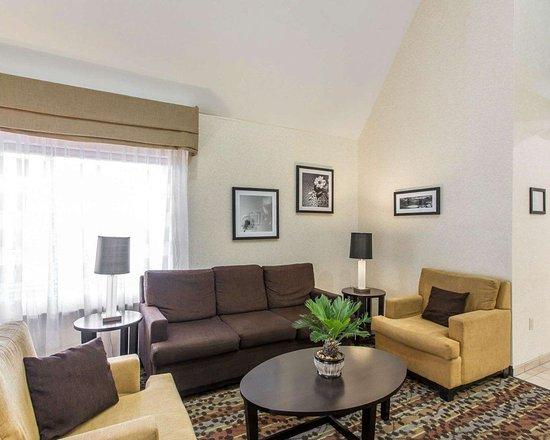 Sleep Inn & Suites Smyrna: Lobby with sitting area