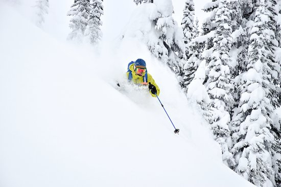 Selkirk Mountain Experience Lodge: Durrand Glacier: Tree skiing one of our 30+ tree ski runs in the Durrand Glacier Area.