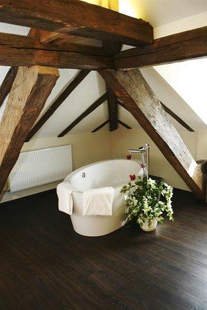 Horw, Switzerland: Suite Amenity
