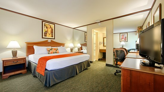 Best Western Seven Seas 107 1 2 9 Updated 2018 Prices Hotel Reviews San Go Ca Tripadvisor