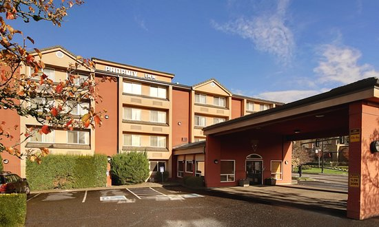 dog friendly review of phoenix inn suites lake oswego lake rh tripadvisor com